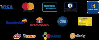 La imagen tiene un atributo ALT vacío; su nombre de archivo es logos-metodos-de-pago.png